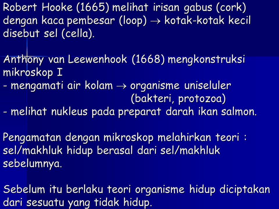 Robert Hooke (1665) melihat irisan gabus (cork) dengan kaca pembesar (loop)  kotak-kotak kecil disebut sel (cella). Anthony van Leewenhook (1668) men