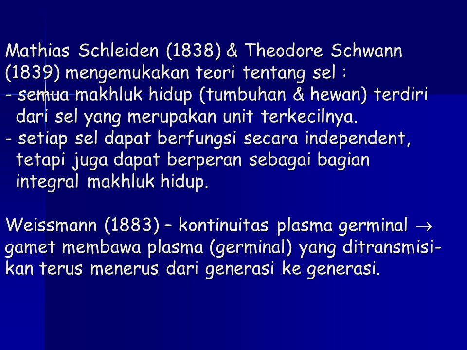 Mathias Schleiden (1838) & Theodore Schwann (1839) mengemukakan teori tentang sel : - semua makhluk hidup (tumbuhan & hewan) terdiri dari sel yang mer