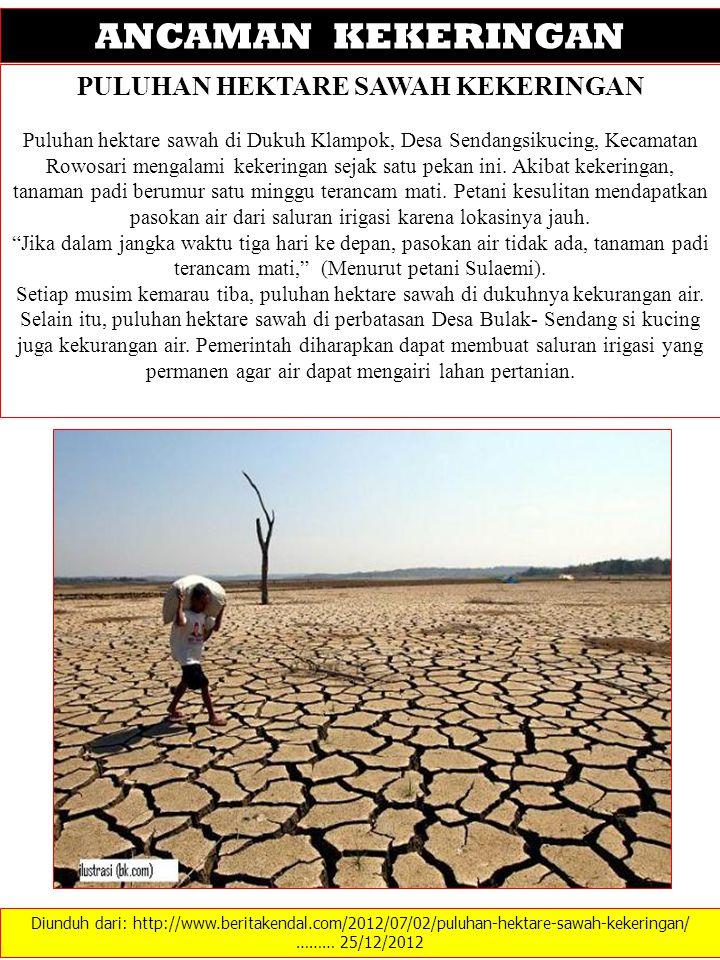 Diunduh dari: http://www.beritakendal.com/2012/07/02/puluhan-hektare-sawah-kekeringan/ ……… 25/12/2012 ANCAMAN KEKERINGAN PULUHAN HEKTARE SAWAH KEKERINGAN Puluhan hektare sawah di Dukuh Klampok, Desa Sendangsikucing, Kecamatan Rowosari mengalami kekeringan sejak satu pekan ini.