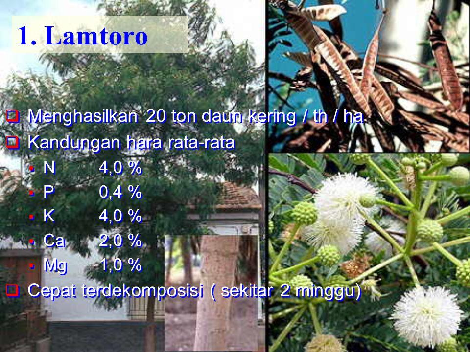 1. Lamtoro  Menghasilkan 20 ton daun kering / th / ha  Kandungan hara rata-rata  N4,0 %  P0,4 %  K4,0 %  Ca2,0 %  Mg1,0 %  Cepat terdekomposis