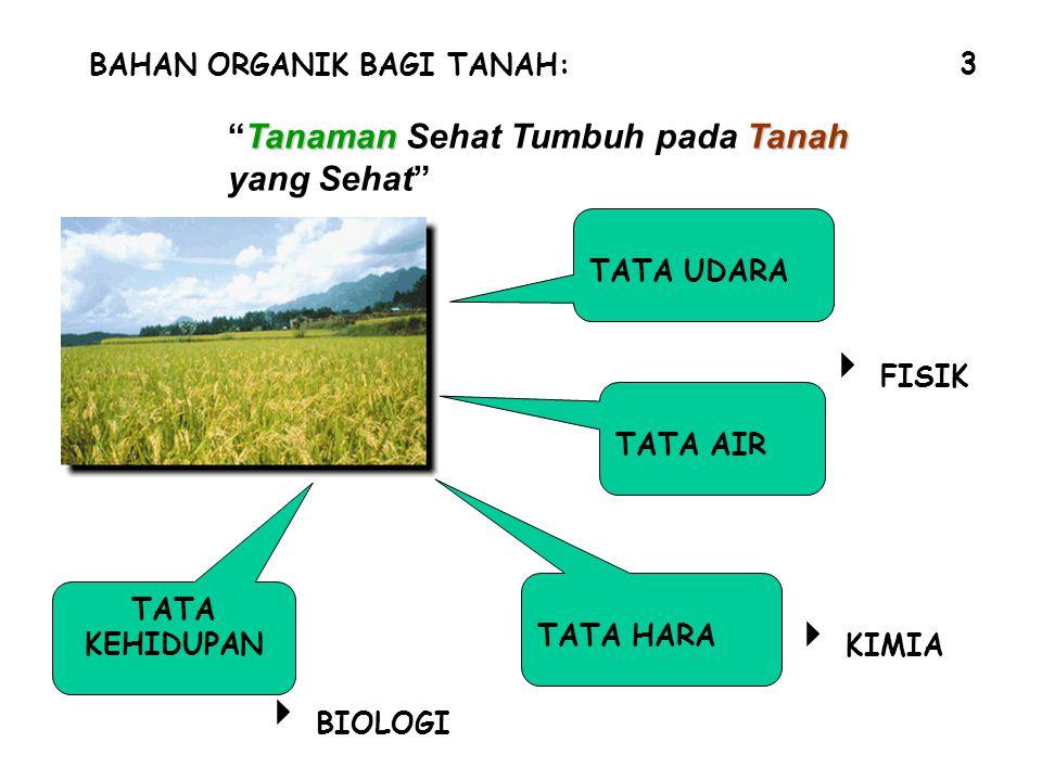 """BAHAN ORGANIK BAGI TANAH: TATA UDARA TATA AIR TATA HARA  FISIK  KIMIA TATA KEHIDUPAN  BIOLOGI 3 TanamanTanah """"Tanaman Sehat Tumbuh pada Tanah yang"""
