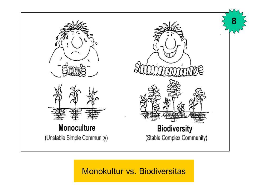 Monokultur vs. Biodiversitas 8