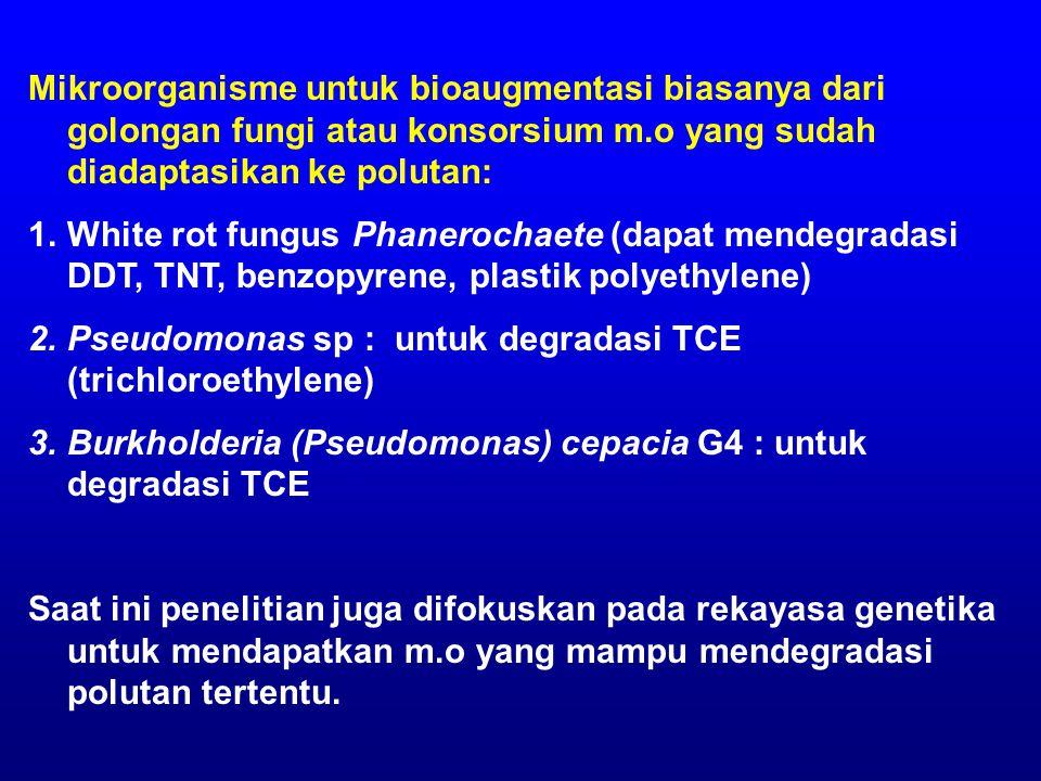 Mikroorganisme untuk bioaugmentasi biasanya dari golongan fungi atau konsorsium m.o yang sudah diadaptasikan ke polutan: 1.White rot fungus Phanerochaete (dapat mendegradasi DDT, TNT, benzopyrene, plastik polyethylene) 2.Pseudomonas sp : untuk degradasi TCE (trichloroethylene) 3.Burkholderia (Pseudomonas) cepacia G4 : untuk degradasi TCE Saat ini penelitian juga difokuskan pada rekayasa genetika untuk mendapatkan m.o yang mampu mendegradasi polutan tertentu.