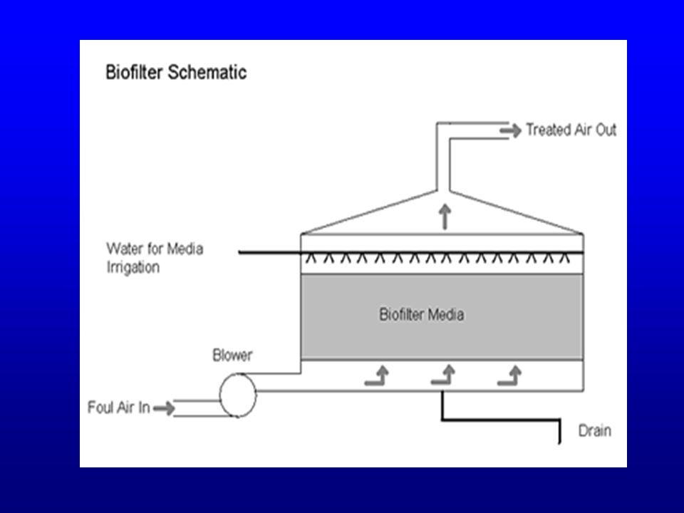 KELEBIHAN BIOFILTER : 1.Sederhana dan murah 2.Luas permukaan internal yang tinggi membuat biofilter ideal untuk menghilangkan polutan yang tidak mudah larut seperti hidrokarbon 3.Dapat diinokulasi dengan m.o yang dpt mendegradasi senyawa xenobiotik misalnya chloromethane KEKURANGAN : 1.Memerlukan area yang luas 2.Tidak mungkin dilakukan pengontrolan pH 3.Bahan pengisi seperti kompos juga menghasilkan bau