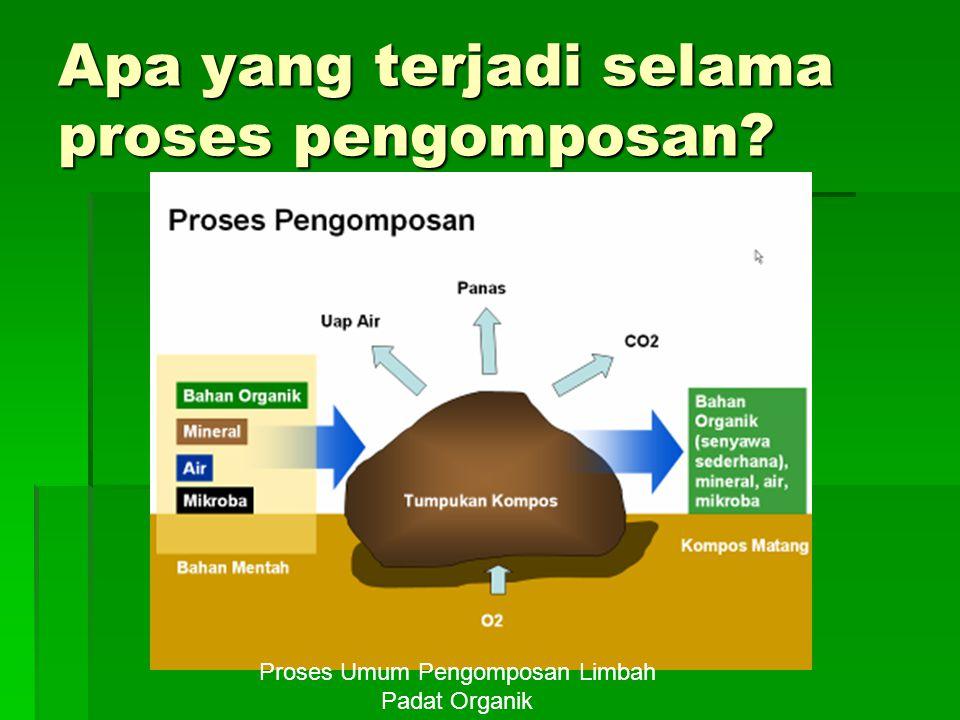 Apa yang terjadi selama proses pengomposan? Proses Umum Pengomposan Limbah Padat Organik