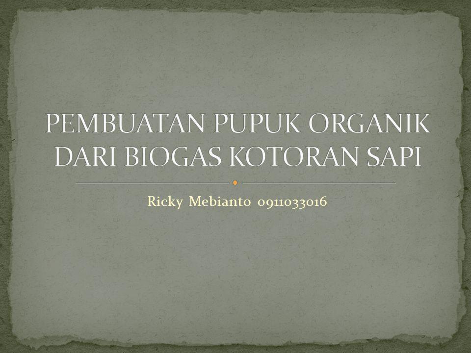 Ricky Mebianto 0911033016