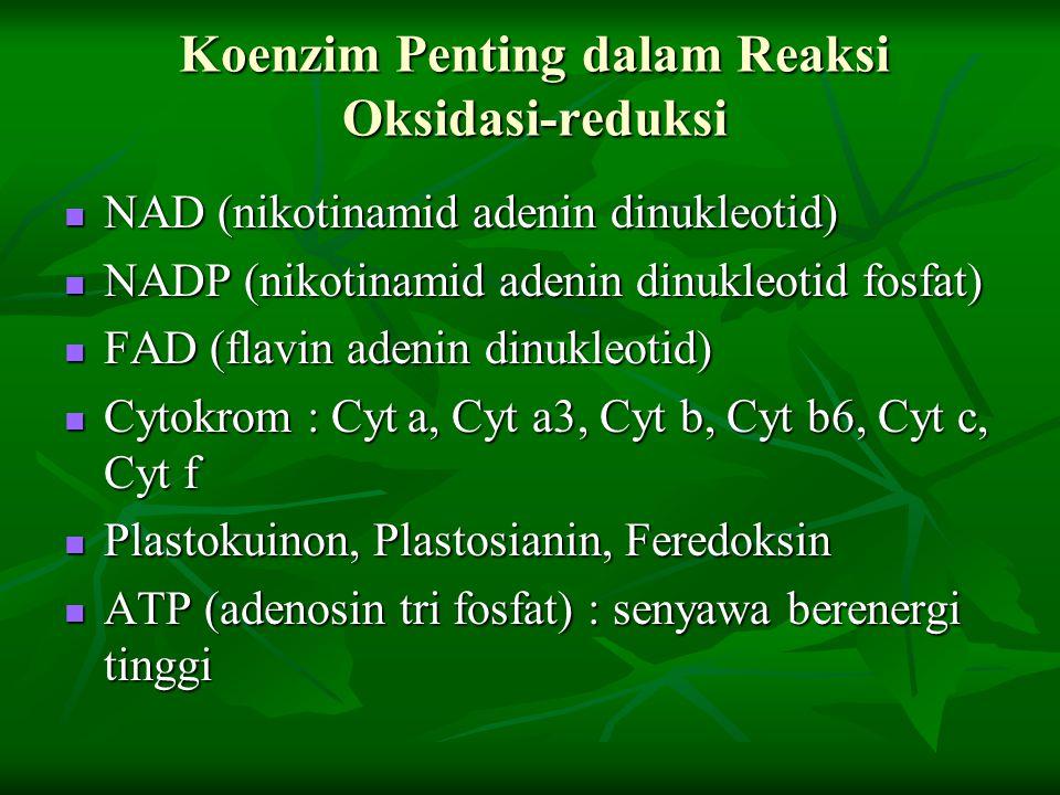 Koenzim Penting dalam Reaksi Oksidasi-reduksi NAD (nikotinamid adenin dinukleotid) NAD (nikotinamid adenin dinukleotid) NADP (nikotinamid adenin dinuk