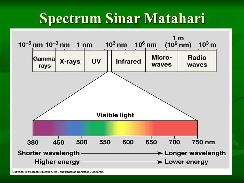 Spectrum Sinar Matahari