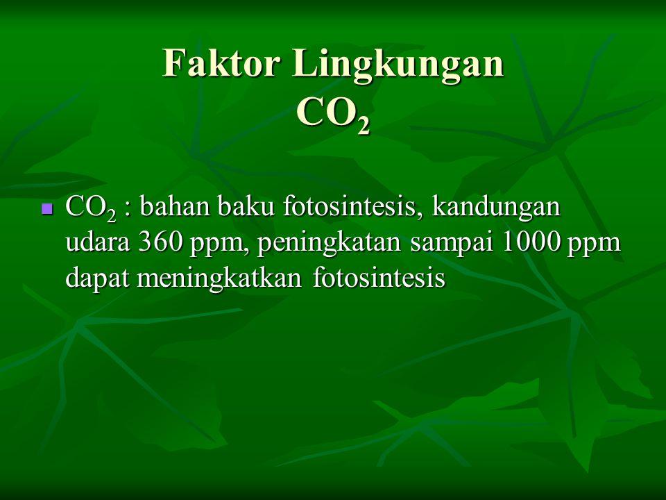 Faktor Lingkungan CO 2 CO 2 : bahan baku fotosintesis, kandungan udara 360 ppm, peningkatan sampai 1000 ppm dapat meningkatkan fotosintesis CO 2 : bah