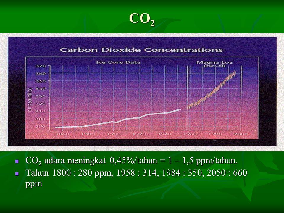 CO 2 CO 2 udara meningkat 0,45%/tahun = 1 – 1,5 ppm/tahun. CO 2 udara meningkat 0,45%/tahun = 1 – 1,5 ppm/tahun. Tahun 1800 : 280 ppm, 1958 : 314, 198