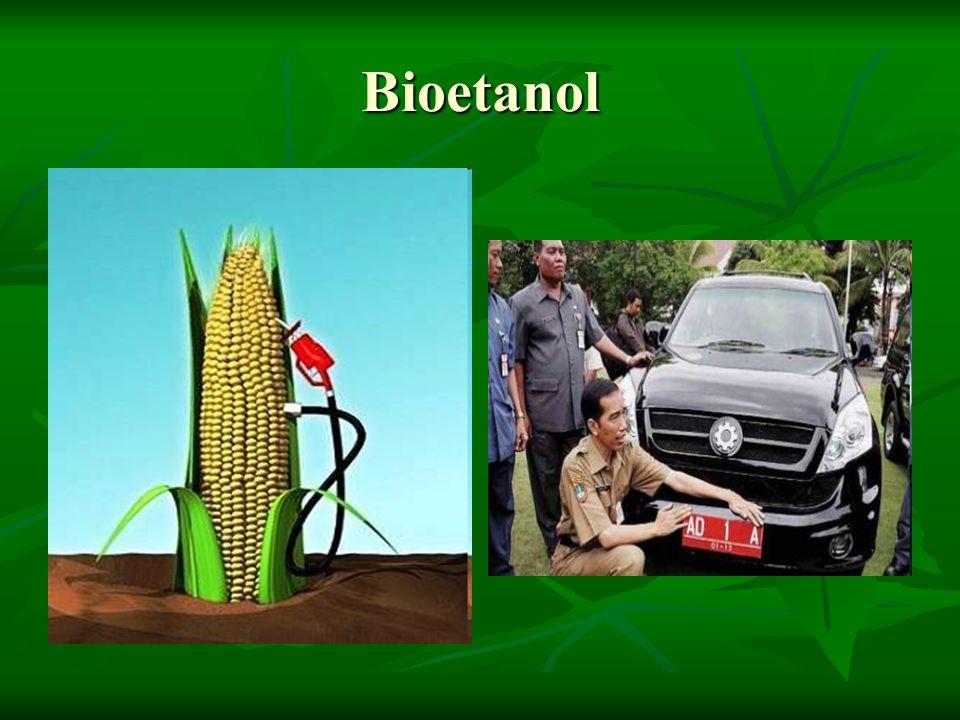 Bioetanol