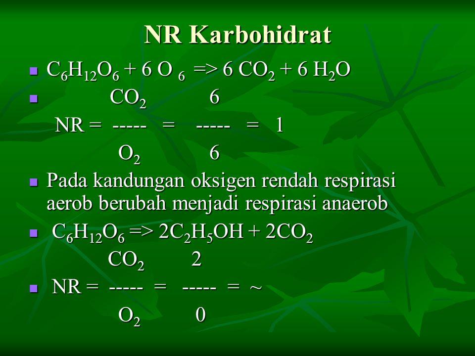 NR Karbohidrat C 6 H 12 O 6 + 6 O 6 => 6 CO 2 + 6 H 2 O C 6 H 12 O 6 + 6 O 6 => 6 CO 2 + 6 H 2 O CO 2 6 CO 2 6 NR = ----- = ----- = 1 NR = ----- = ---