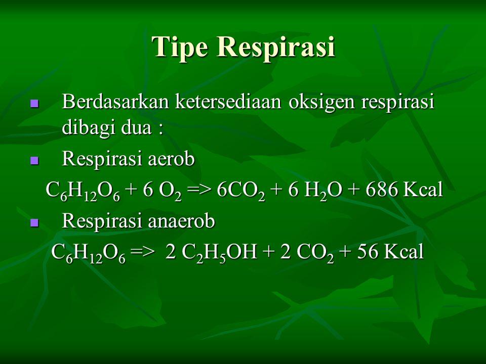 Tipe Respirasi Berdasarkan ketersediaan oksigen respirasi dibagi dua : Berdasarkan ketersediaan oksigen respirasi dibagi dua : Respirasi aerob Respira