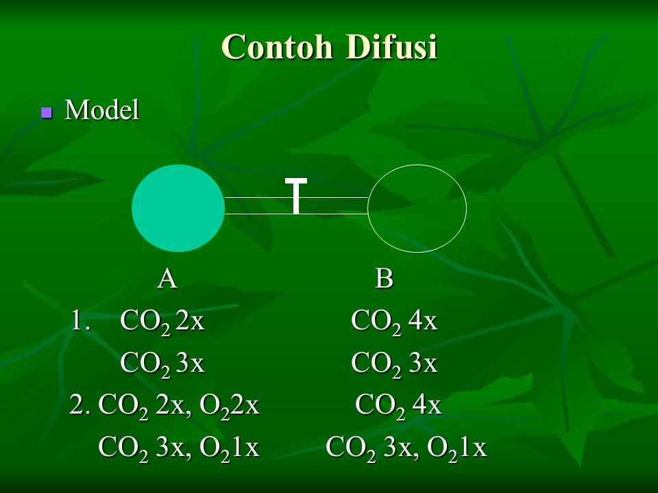 Contoh Difusi Model Model A B A B 1. CO 2 2x CO 2 4x 1. CO 2 2x CO 2 4x CO 2 3x CO 2 3x CO 2 3x CO 2 3x 2. CO 2 2x, O 2 2x CO 2 4x 2. CO 2 2x, O 2 2x
