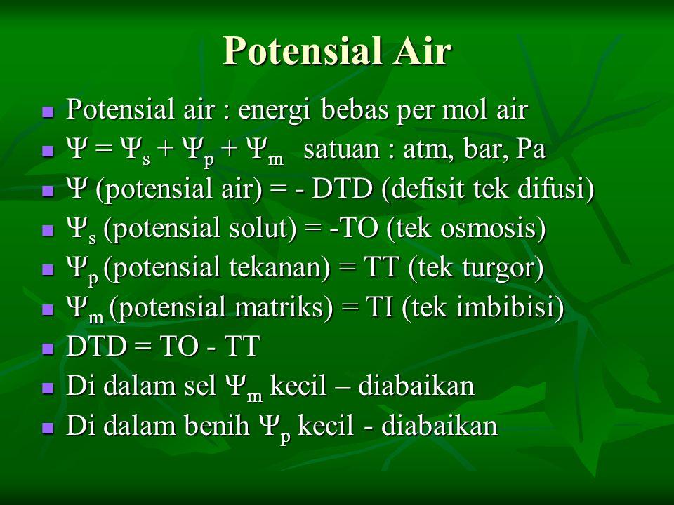 Potensial Air Potensial air : energi bebas per mol air Potensial air : energi bebas per mol air Ψ = Ψ s + Ψ p + Ψ m satuan : atm, bar, Pa Ψ = Ψ s + Ψ