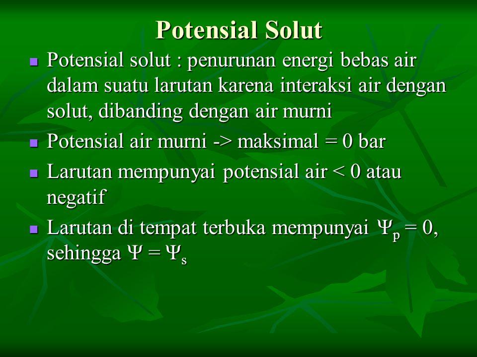 Potensial Solut Potensial solut : penurunan energi bebas air dalam suatu larutan karena interaksi air dengan solut, dibanding dengan air murni Potensi