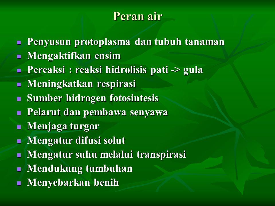 Peran air Penyusun protoplasma dan tubuh tanaman Penyusun protoplasma dan tubuh tanaman Mengaktifkan ensim Mengaktifkan ensim Pereaksi : reaksi hidrol