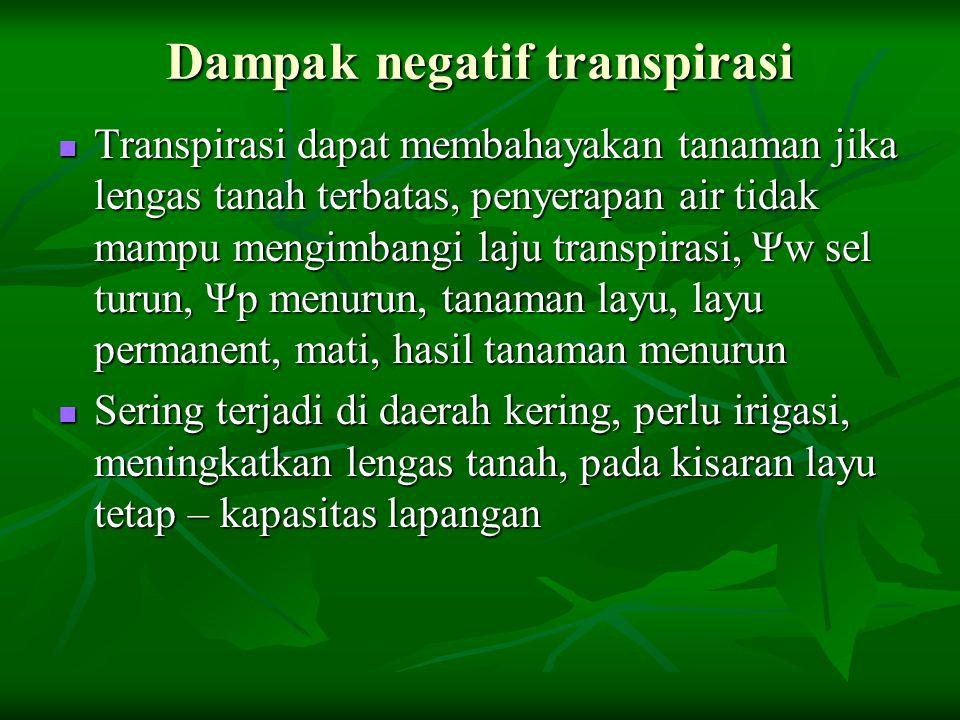 Dampak negatif transpirasi Transpirasi dapat membahayakan tanaman jika lengas tanah terbatas, penyerapan air tidak mampu mengimbangi laju transpirasi,
