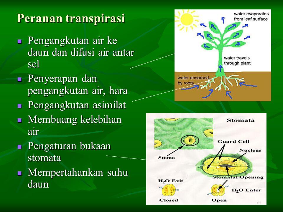 Peranan transpirasi Pengangkutan air ke daun dan difusi air antar sel Pengangkutan air ke daun dan difusi air antar sel Penyerapan dan pengangkutan ai
