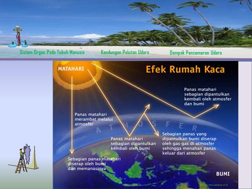 Sistem Organ Pada Tubuh ManusiaKandungan Polutan Udara Dampak Pencemaran Udara Efek Rumah Kaca  Karbon dioksida, gas Amoniak, dll  Adanya pemantulan