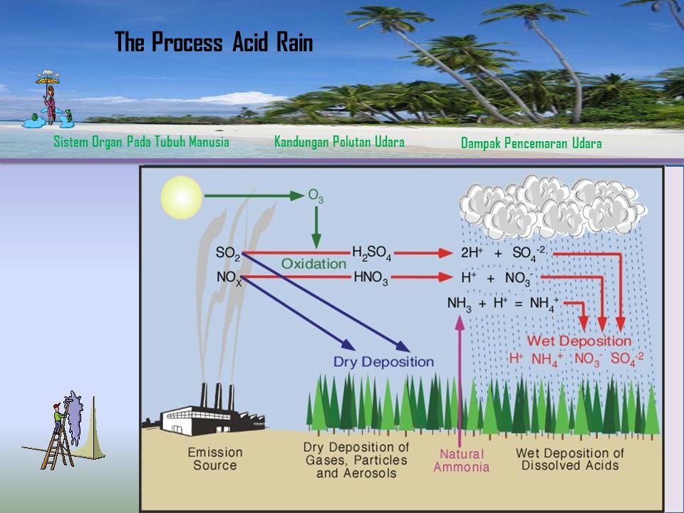 Sistem Organ Pada Tubuh ManusiaKandungan Polutan Udara Dampak Pencemaran Udara  Adanya Reaksi Sulfur Dioksida dengan Air  Adanya Reaksi Nitrogen Dio