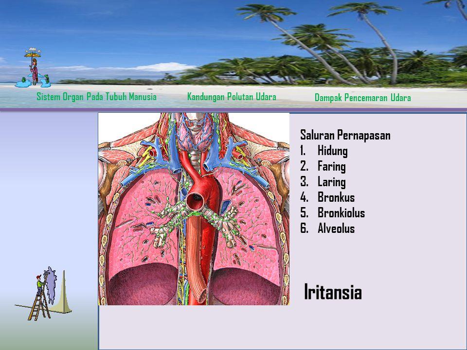 Sistem Organ Pada Tubuh ManusiaKandungan Polutan Udara Dampak Pencemaran Udara Saluran Pernapasan 1.Hidung 2.Faring 3.Laring 4.Bronkus 5.Bronkiolus 6.Alveolus Iritansia