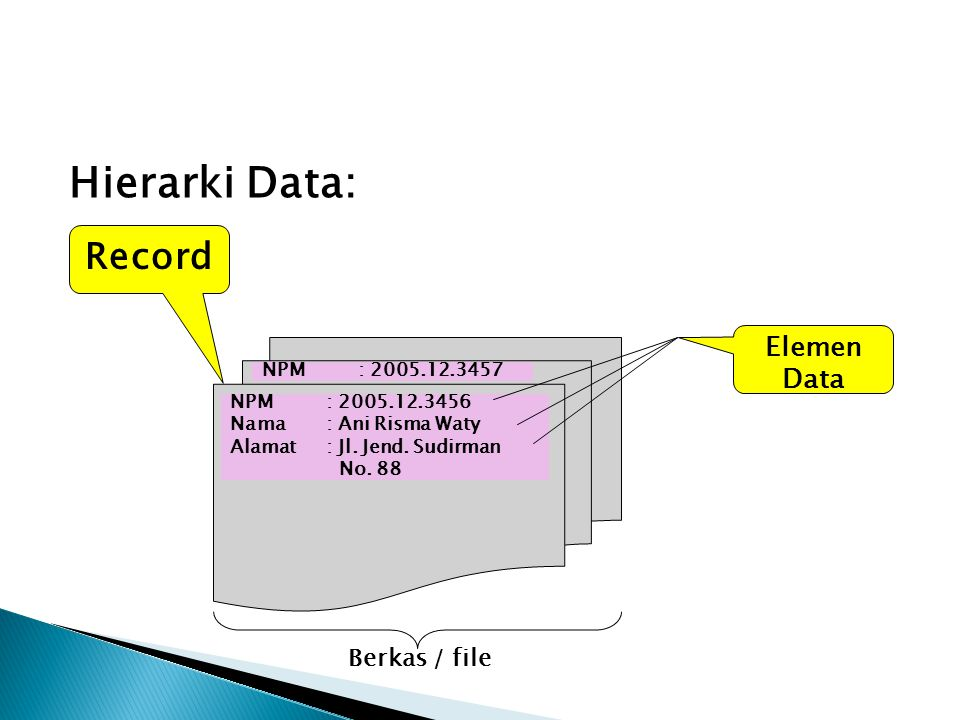 Hierarki Data: NPM: 2005.12.3456 Nama: Ani Risma Waty Alamat: Jl. Jend. Sudirman No. 88 NPM : 2005.12.3457 Record Elemen Data Berkas / file
