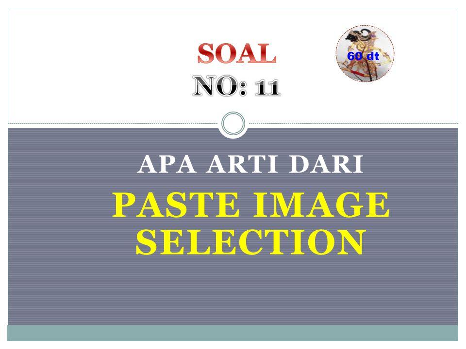 APA ARTI DARI PASTE IMAGE SELECTION 60 dt