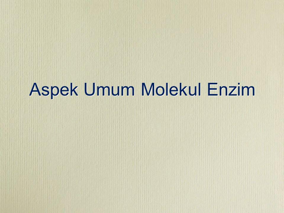 Aspek Umum Molekul Enzim