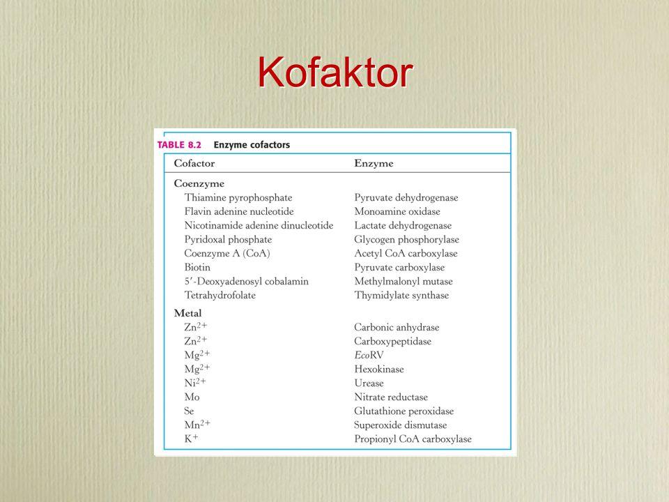 Kofaktor