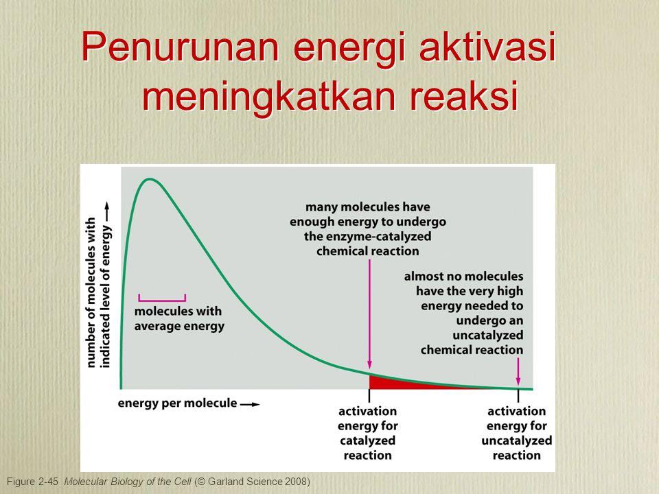 Figure 2-45 Molecular Biology of the Cell (© Garland Science 2008) Penurunan energi aktivasi meningkatkan reaksi