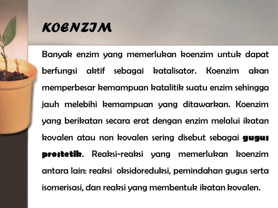 KOENZIM Banyak enzim yang memerlukan koenzim untuk dapat berfungsi aktif sebagai katalisator.