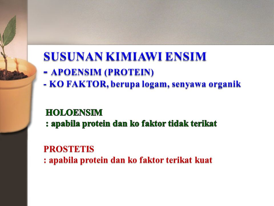 PROSTETIS : apabila protein dan ko faktor terikat kuat