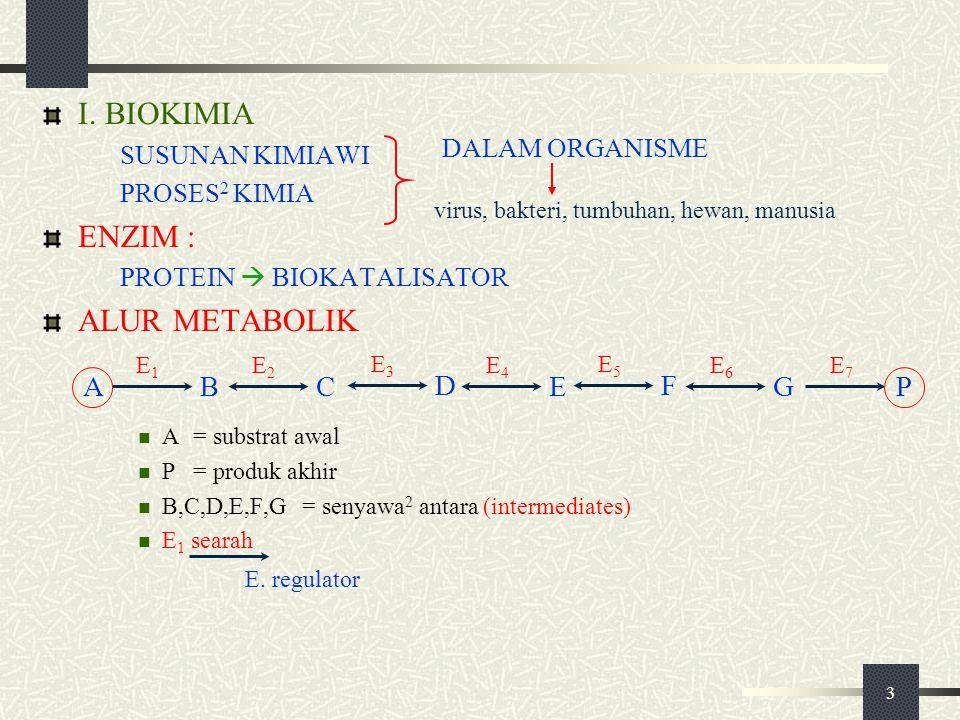 3 I. BIOKIMIA SUSUNAN KIMIAWI PROSES 2 KIMIA ENZIM : PROTEIN  BIOKATALISATOR ALUR METABOLIK A=substrat awal P=produk akhir B,C,D,E,F,G=senyawa 2 anta