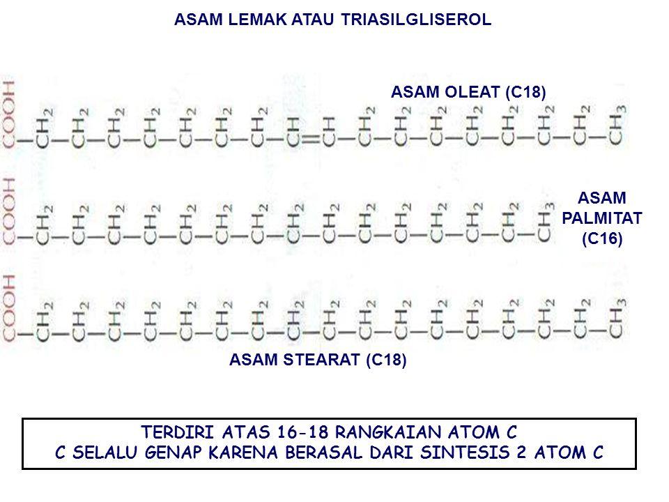 FUNGSI PROTEIN SEBAGAI KATALISATOR → ENZIM MENGATUR GERAKAN: AKTIN DAN MIOSIN, PROTEIN KONTRAKTIL PENGANGKUTAN → DARAH PENYUSUN HAEMOGLOBIN & ANTIBODI CADANGAN MAKANAN (ENERGI) (OVALBUMIN & KASEIN) JARINGAN IKAT (KOLAGEN & ELASTIN) PENYUSUN RAMBUT DAN KUKU (KERATIN) PROTEIN HORMONAL: KOORDINASI AKTIFITAS ORGANISME PROTEIN PERTAHANAN: ANTIBODI LIPID: MOL.BIOLOGIS BESAR YANG TIDAK MENCAKUP POLIMER.
