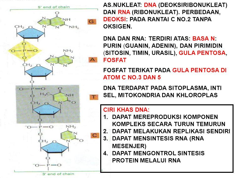  W WAX (LILIN) MERUPAKAN RANGKAIAN ASAM LEMAK YANG SANGAT PANJANG FUNGSI SEBAGAI PELAPIS TUBUH TUMBUHAN UNTUK MENCEGAH KEHILANGAN AIR PADA TELINGA (PELINDUNG) PADA BULU BURUNG (KEDAP AIR) DNA, RNA, AMP, ADP, ATP, (COENZIM A), DAN AMP SIKLIK (cAMP) NUKLEOTIDA, SEBAGAI ENERGI SIAP PAKAI SEBAGAI PENANDA MOLEKUL KHUSUS DI DALAM SEL MERUPAKAN POLIMER TAK BERCABANG SEBAGAI KODE GENETIK UNTUK PEWARISAN SIFAT DAN SINTESIS PROTEIN REPRODUKSI KOMPONEN KOMPLEKS YANG DITERUSKAN KE GENERASI BERIKUT SUATU POLIMER DENGAN MONOMER NUKLEOTIDA DAN MEMUAT INFORMASI GENETIK YANG TERDAPAT DALAM SUATU UNIT PENURUNAN SIFAT (GEN), GEN TERDIRI ATAS MOLEKUL DNA