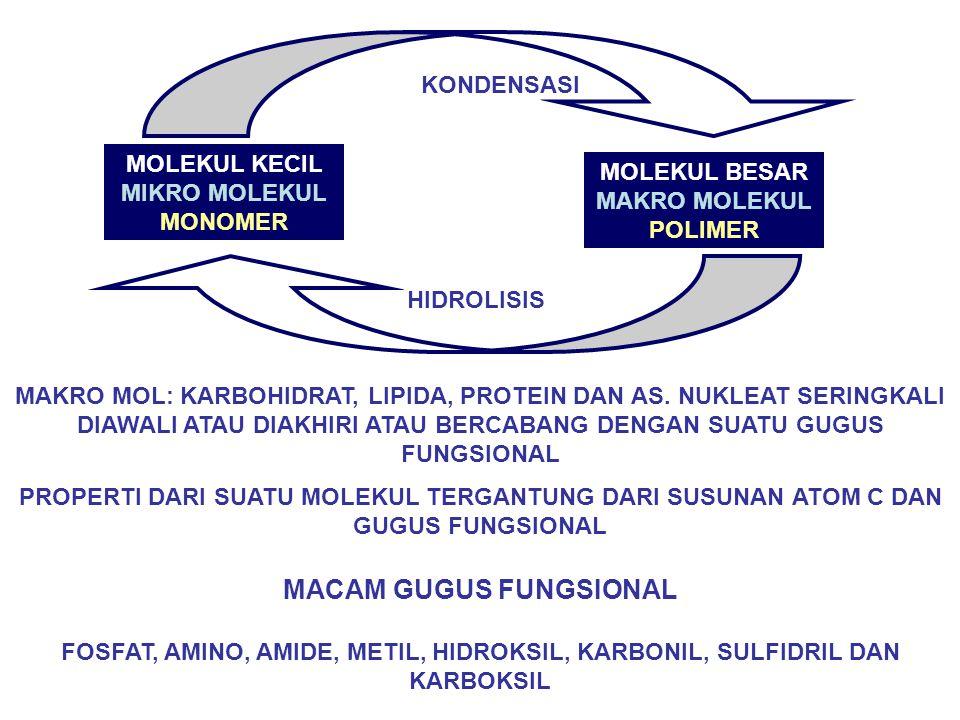 RNA DI INTI SEL, MITOKHONDRIA, RIBOSOM DAN SITOSOL NUKLEOSIDA: BASA N DAN GULA PENTOSA NUKLEOTIDA: BASA N, GULA PENTOSA DAN POSPAT C no.5 C no.3