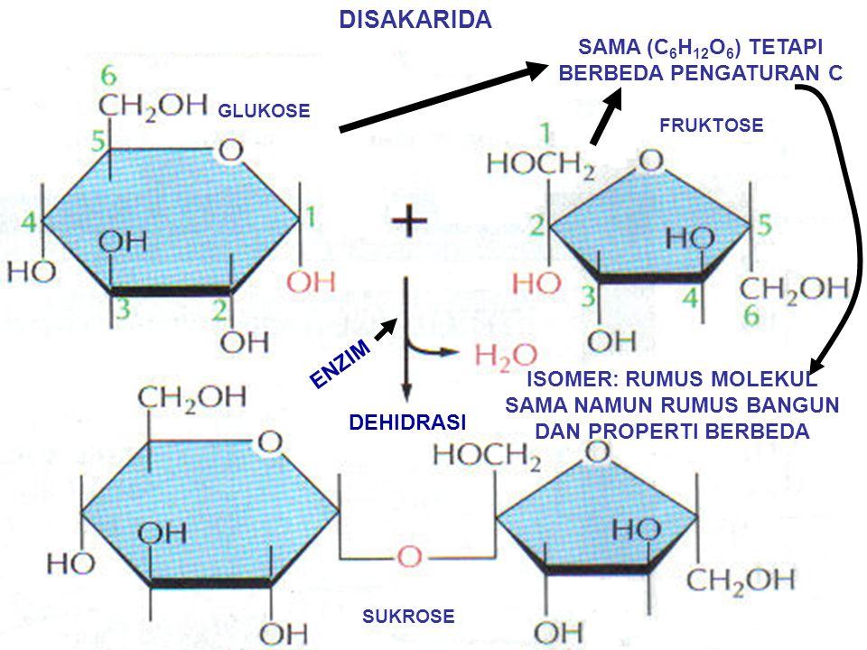 (CH 2 O)n → n  3 – 7 DISEBUT SAKARIDA (GULA) MONOSAKARIDA:MONOMER C H O C CH 2 OH TRIOSE O C CH 2 OH GLISERALDEHID MERUPAKAN ALDOSE DIHIDROKSI ASETON MERUPAKAN KETOSE HEKSOSE (n=6) GLUKOSE FRUKTOSE PENTOSE (n=5) RIBOSE