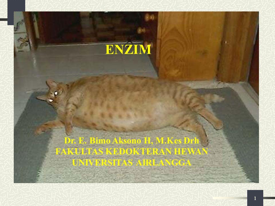 1 ENZIM Dr. E. Bimo Aksono H, M.Kes Drh FAKULTAS KEDOKTERAN HEWAN UNIVERSITAS AIRLANGGA
