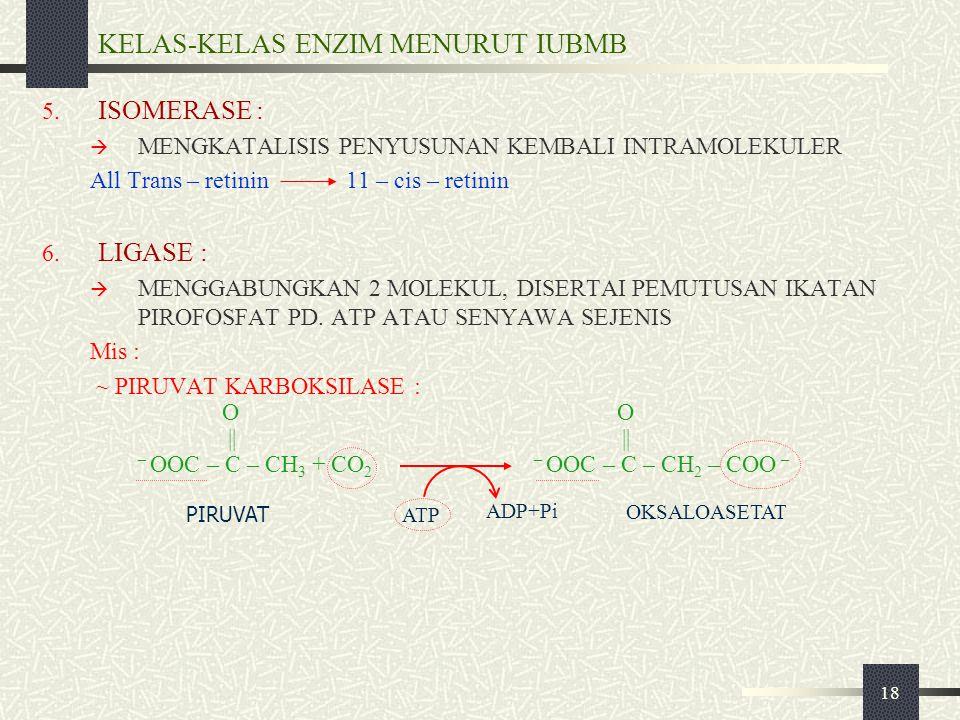 18 KELAS-KELAS ENZIM MENURUT IUBMB 5. ISOMERASE :  MENGKATALISIS PENYUSUNAN KEMBALI INTRAMOLEKULER All Trans – retinin 11 – cis – retinin 6. LIGASE :