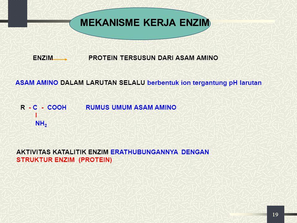 19 MEKANISME KERJA ENZIM ENZIM PROTEIN TERSUSUN DARI ASAM AMINO ASAM AMINO DALAM LARUTAN SELALU berbentuk ion tergantung pH larutan R - C - COOH RUMUS