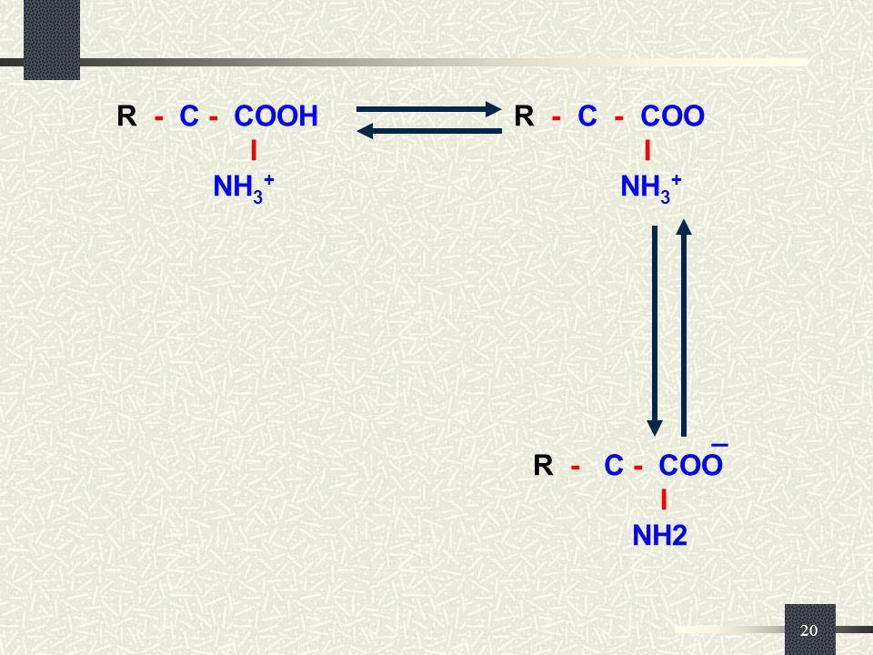 20 _ R - C - COOH R - C - COO I I NH 3 + NH 3 + _ R - C - COO I NH2 R - C - COOH R - C - COO I I NH 3 + NH 3 + _ R - C - COO I NH2