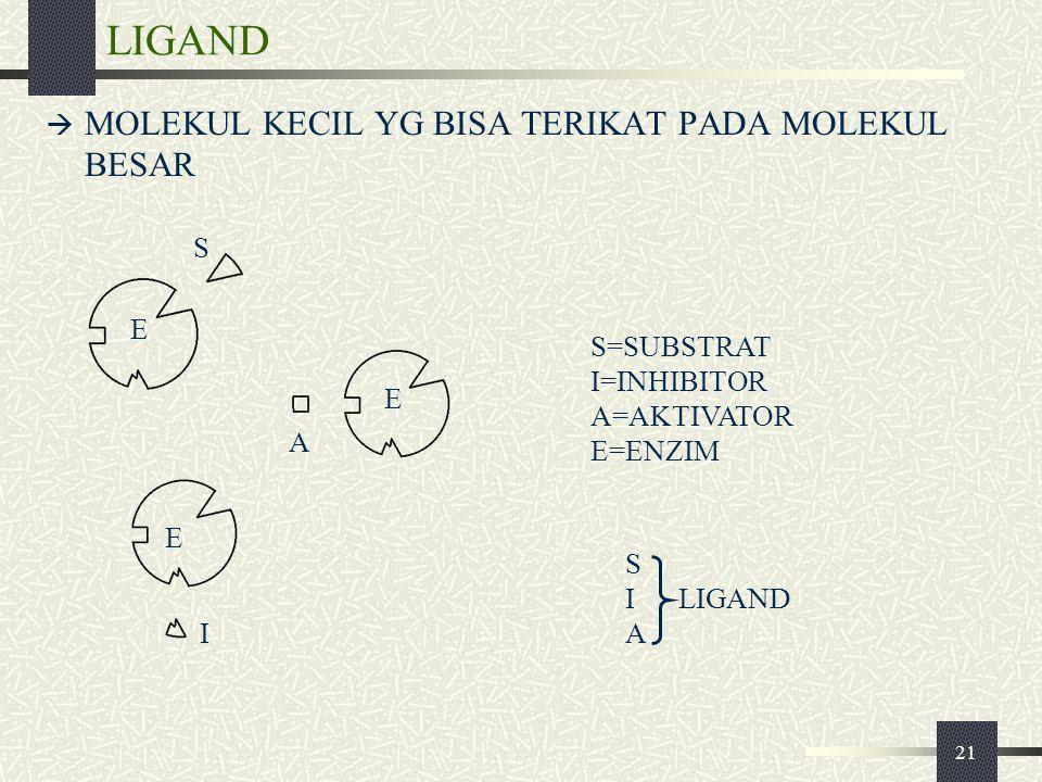 21 LIGAND  MOLEKUL KECIL YG BISA TERIKAT PADA MOLEKUL BESAR S=SUBSTRAT I=INHIBITOR A=AKTIVATOR E=ENZIM S I LIGAND A E A E I E S