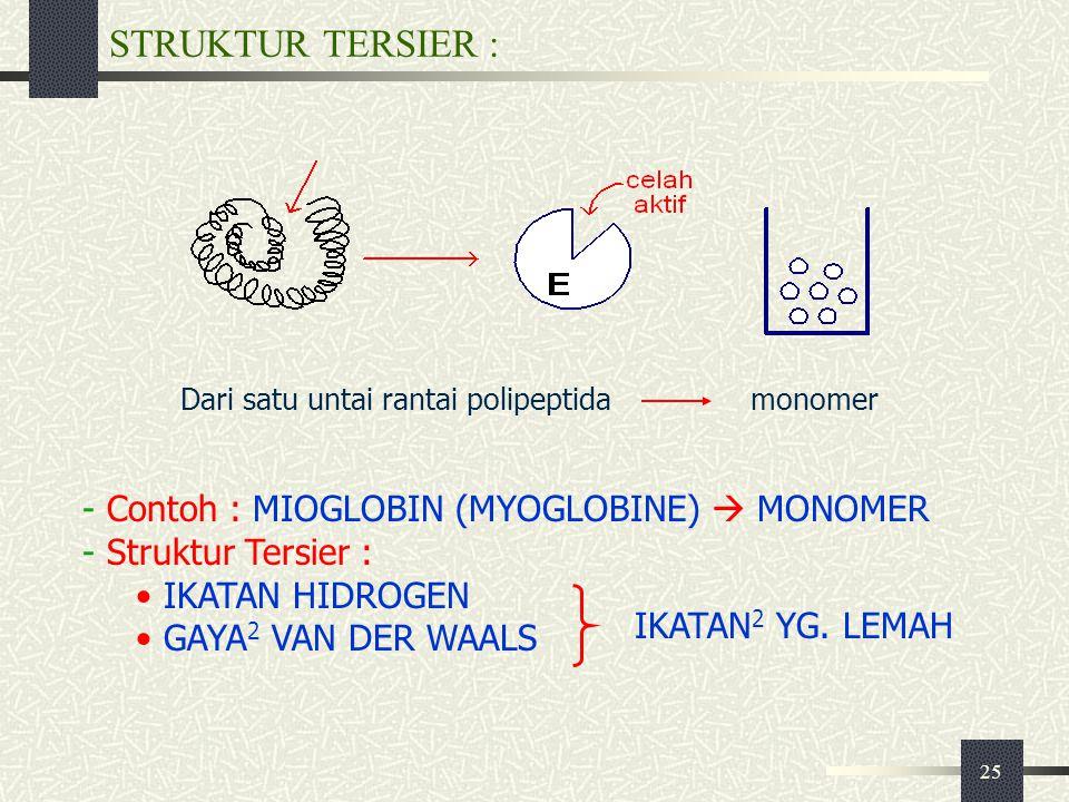 25 STRUKTUR TERSIER : Dari satu untai rantai polipeptidamonomer - Contoh : MIOGLOBIN (MYOGLOBINE)  MONOMER - Struktur Tersier : IKATAN HIDROGEN GAYA