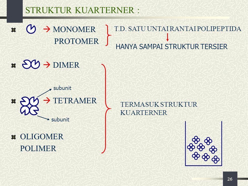 26 STRUKTUR KUARTERNER :  MONOMER PROTOMER  DIMER  TETRAMER OLIGOMER POLIMER subunit TERMASUK STRUKTUR KUARTERNER T.D. SATU UNTAI RANTAI POLIPEPTID