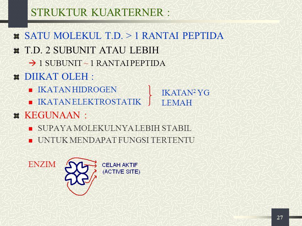27 STRUKTUR KUARTERNER : SATU MOLEKUL T.D. > 1 RANTAI PEPTIDA T.D. 2 SUBUNIT ATAU LEBIH  1 SUBUNIT ~ 1 RANTAI PEPTIDA DIIKAT OLEH : IKATAN HIDROGEN I