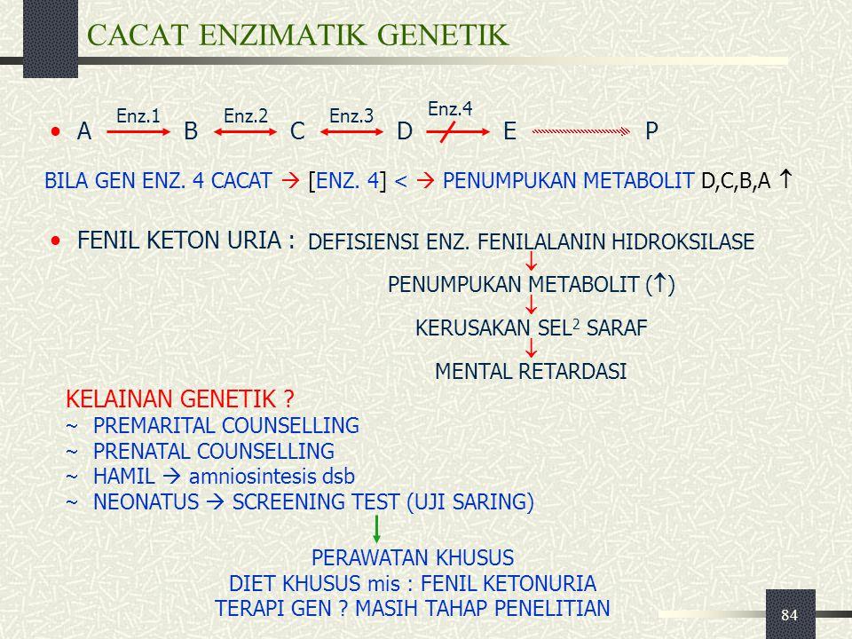 84 CACAT ENZIMATIK GENETIK ABCDEP KELAINAN GENETIK ?  PREMARITAL COUNSELLING  PRENATAL COUNSELLING  HAMIL  amniosintesis dsb  NEONATUS  SCREENIN