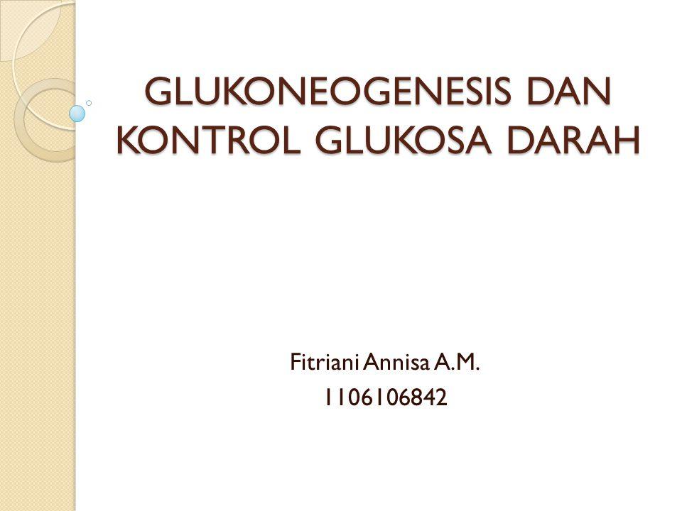 GLUKONEOGENESIS DAN KONTROL GLUKOSA DARAH Fitriani Annisa A.M. 1106106842