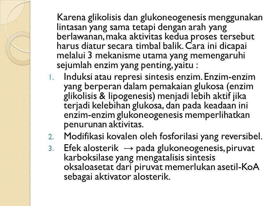 Pengendalian Kadar Glukosa Darah Glukosa darah berasal dari makanan, glukoneogenesis, dan glikogenolisis.
