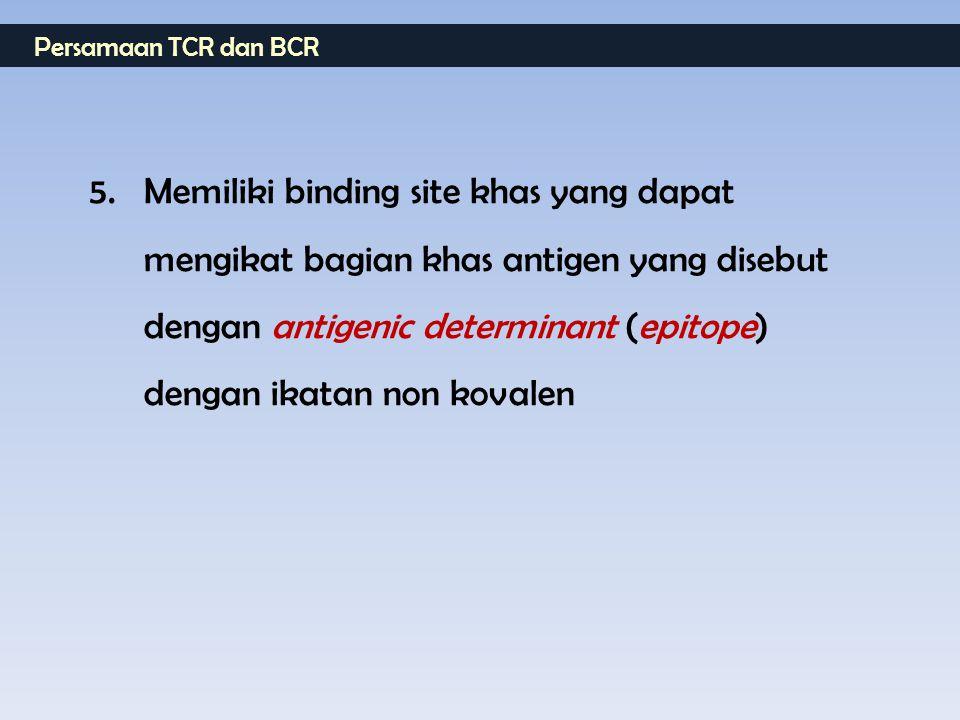 Persamaan TCR dan BCR 5. Memiliki binding site khas yang dapat mengikat bagian khas antigen yang disebut dengan antigenic determinant (epitope) dengan